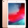 iPad mini (5 Gen)