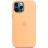 """Чехол Silicone Case with Magsafe для Apple iPhone 12 Pro / 12 (6.1"""") Cantaloupe"""