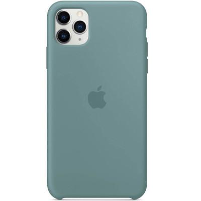 Apple Silicon Case iPhone 11 Pro Cactus (HC)